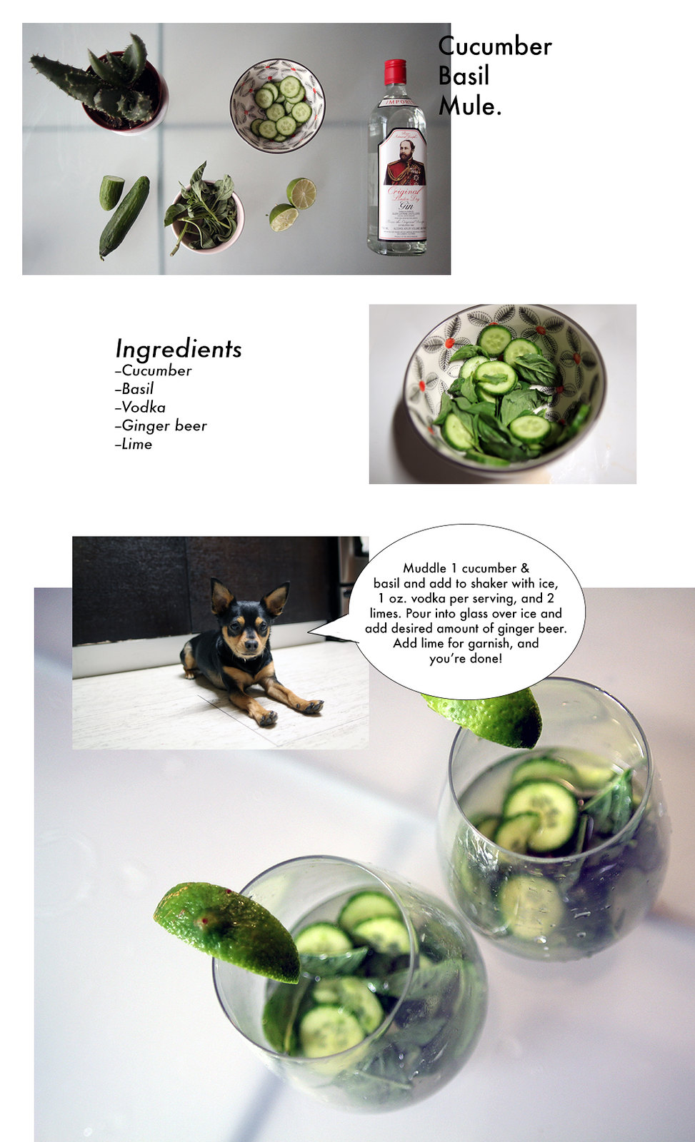CucumberBasil
