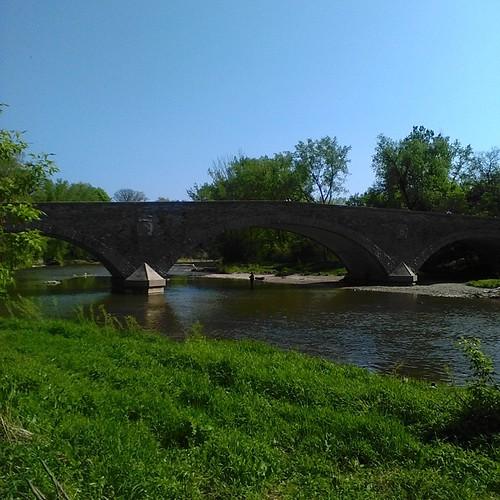 Fisher under bridge #toronto #humberriver #etiennebrulepark #oldmill #bridges