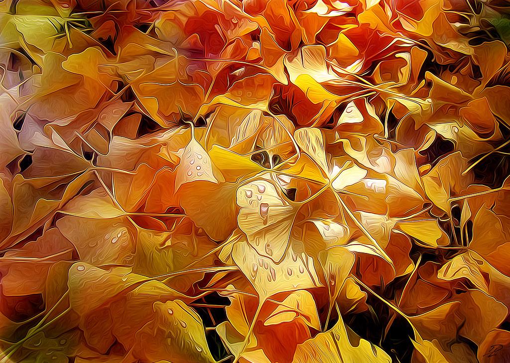 Yaprak Fotoğrafları