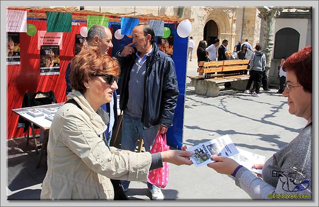Feria de Asociaciones en Briviesca (8)