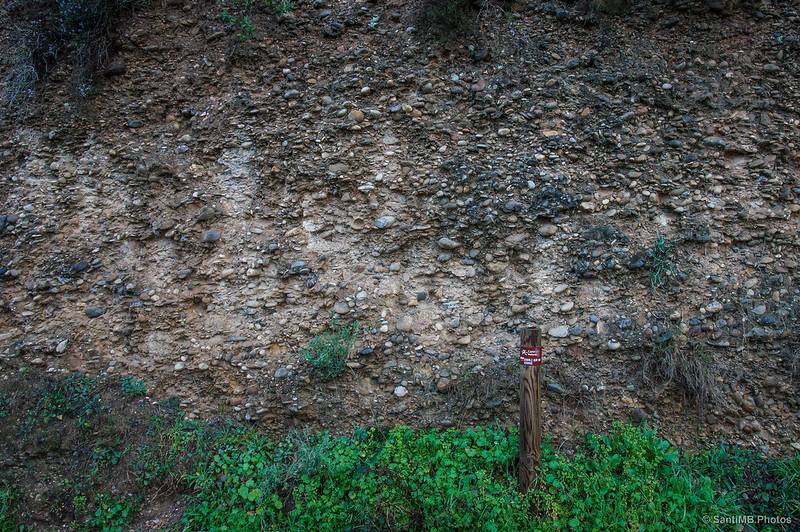 La naturaleza sedimentaria de la orilla del Ebro