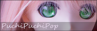 PPP_banner