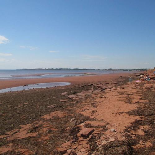 Family on the shore #pei #victoria #victoriabythesea #beach #red #lowtide #northumberlandstrait #latergram