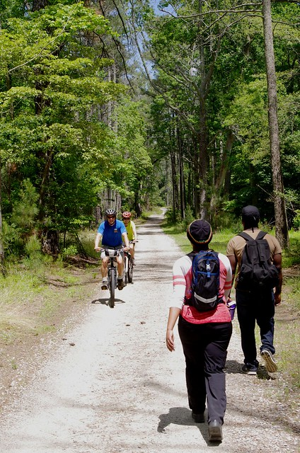 A Day in the Life of York River State Park: Backbone Trail - State