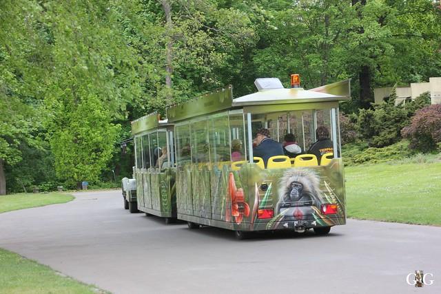 Tierpark Friedrichsfelde 10.05.201533