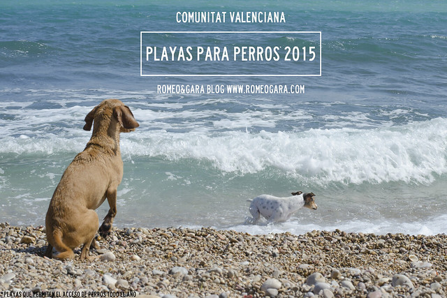 playa para perros comunitat valenciana