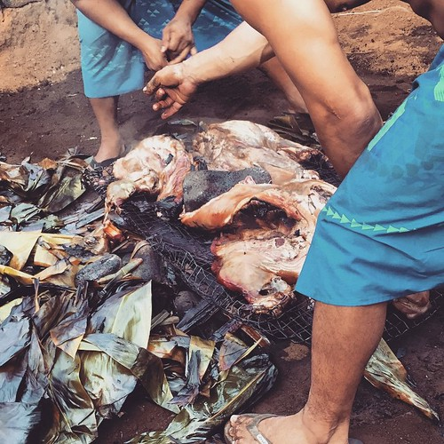 #kvphawaii Hello Pork! Digging up roast pig for @RoyalKonaResort luau. NOM! | by queenkv
