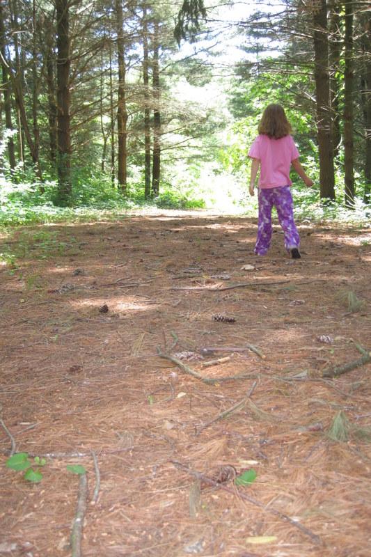 trails (4)