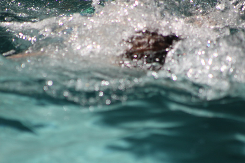 Pool Time Boone May 2015 Tracy Dillard Flickr