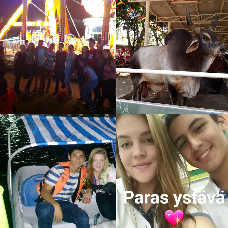 PicMonkey Collage18