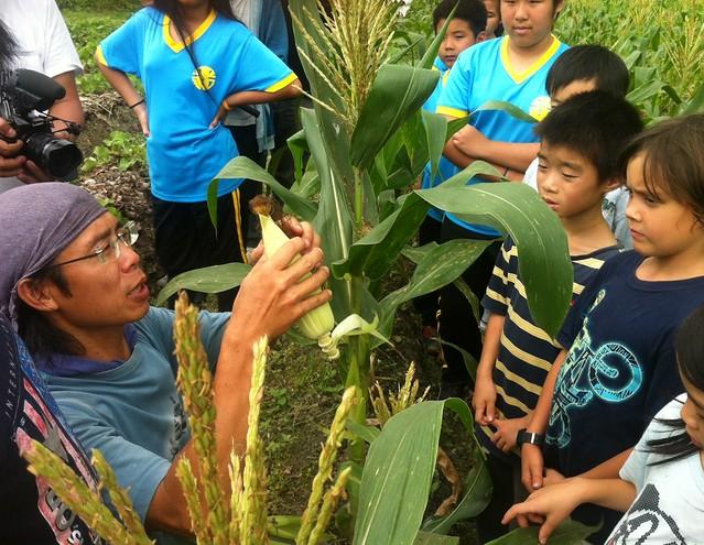 現在大王也開始上食農教育課程,不時可見到他在田中解說作物生長原理的身影。攝影:許靜娟。