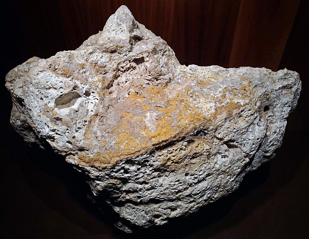 Auriferous volcanic breccia (Little Annie Mine, Summitvill ...