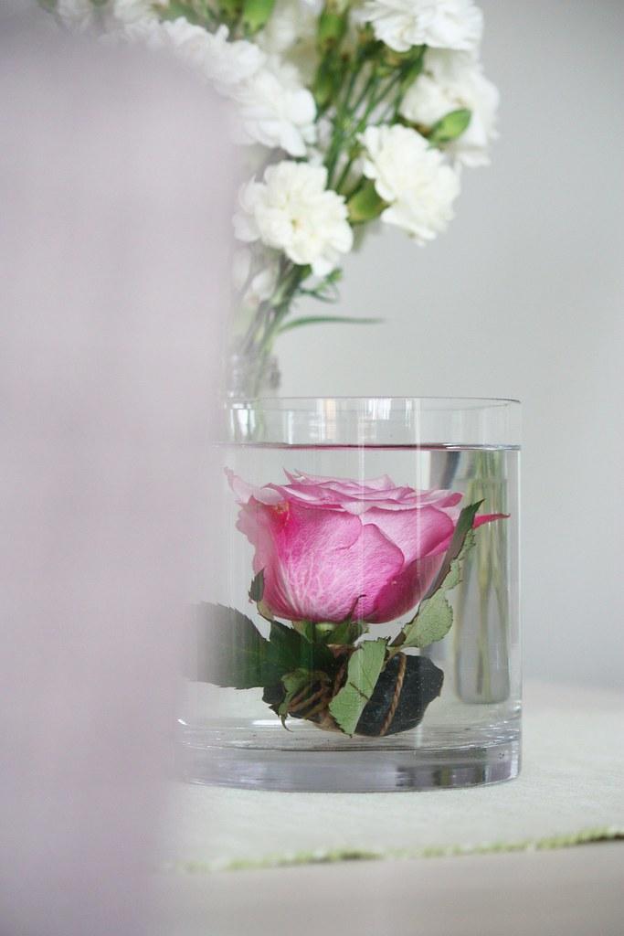 ruusu maljakossa