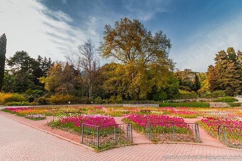 Crimea-826