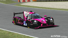 Endurance Series rF2 - build 3.00 released 27693475854_d2e98a9b2c_m