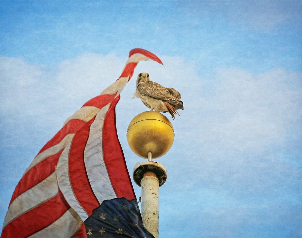 Christo on his flagpole