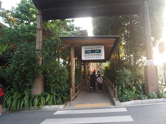 P4189354 ナイト・サファリ シンガポール