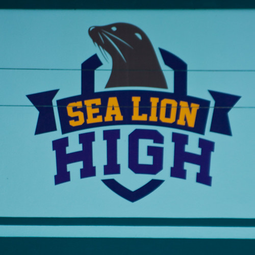 Sea Lion High-11.jpg