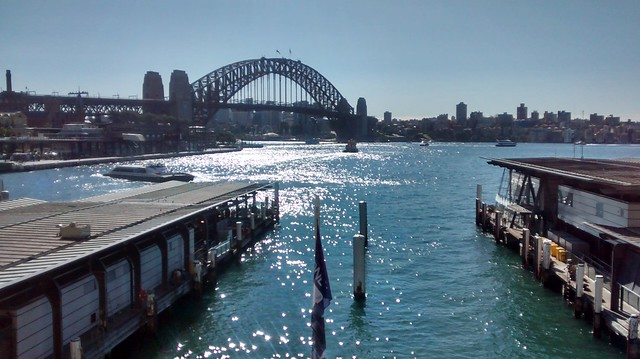 sydney harbour from circular quay station