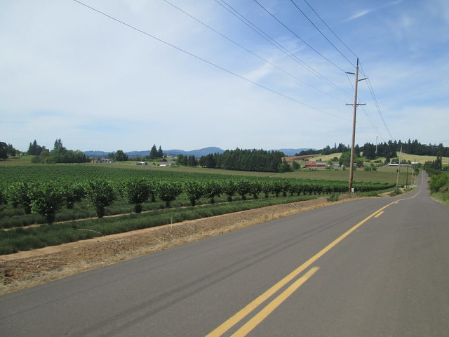 descending Fryer Rd to OR-47