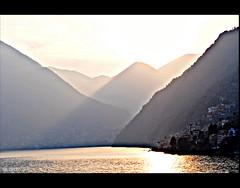 Ramo del Lago di Como II