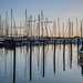 Reflections at the Marina