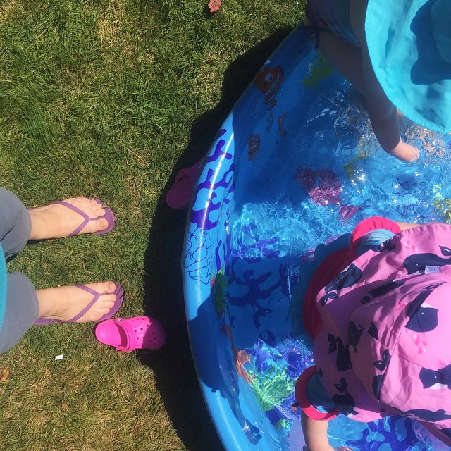 I bought a pool for the backyard today and they already love it!  #100DaysofSummer2015