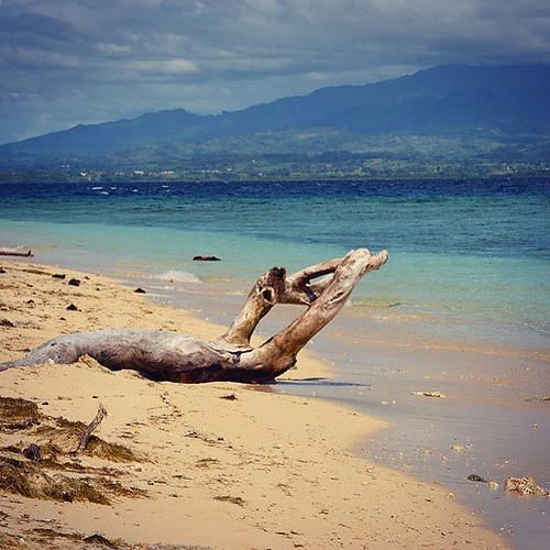 #MeuOceano---@luciamalla-Fiji