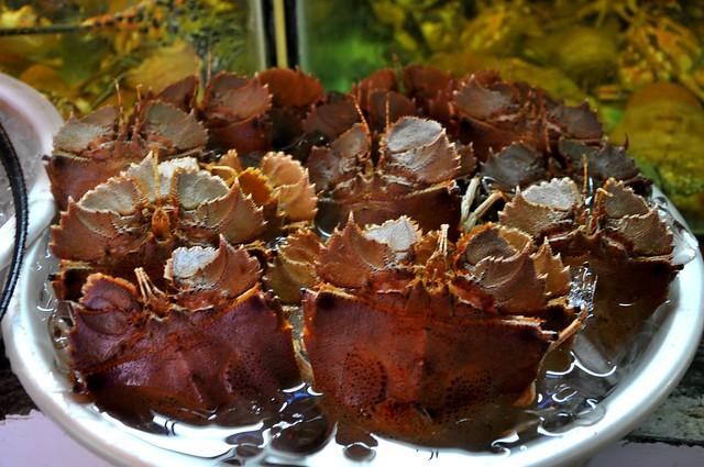 Rock Lobsters