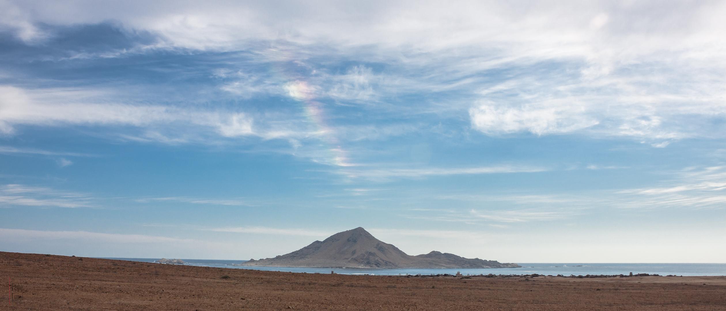 Parque Nacional Pan de Azúcar   Atacama   Chile