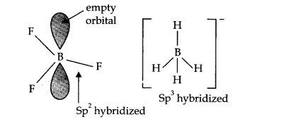 cbse-class-11th-chemistry-chapter-11-p-block-elements-2