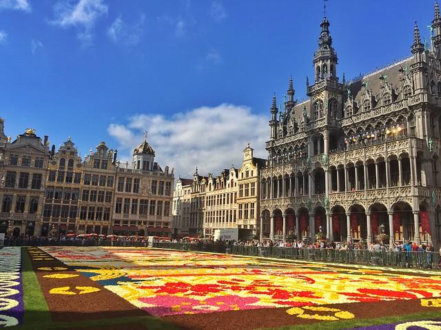 Alfombra de flores en la Grand Place de Bruselas (Tapis de fleurs 2016)