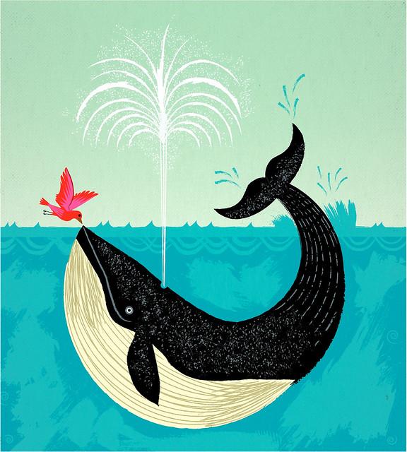 iota-ilustration-whale