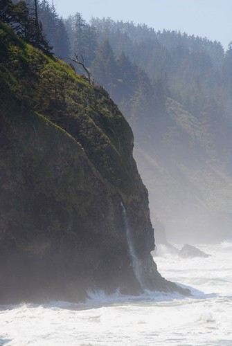 Cliff With Sea Mist