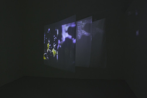 Degree Show Documentation - 02
