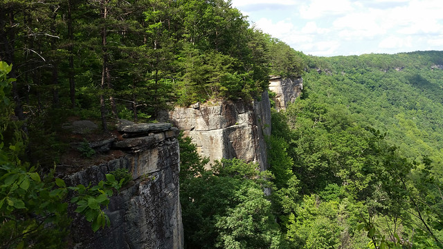 20150530_New_River_Gorge_074