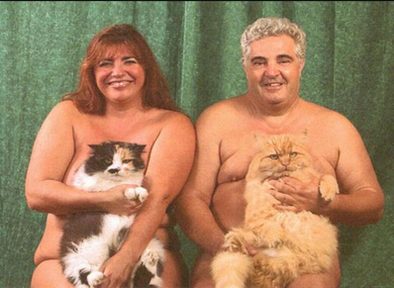 Ten kažkas reddite pakomentavo: I kind of feel bad for these cats...