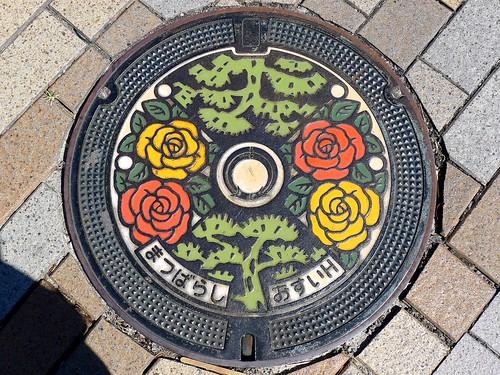 Matsubara Osaka, manhole cover (大阪府松原市のマンホール)