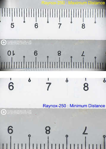 Raynox-250 preformance