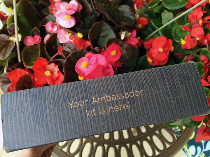 Hootsuite Ambassador #HootAmb Kit Box