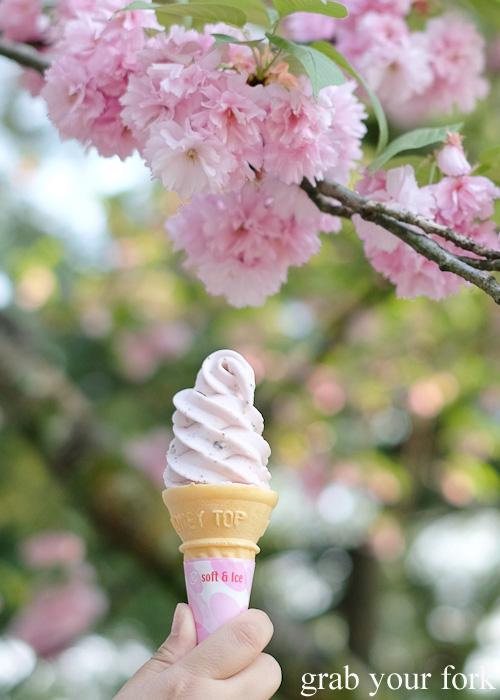 Sakura cherry blossom soft serve at Kenrokuen Garden in Kanazawa, Japan