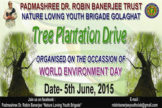 tree-plantation-1