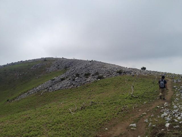 霊仙山 山頂への道