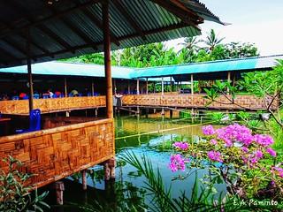 Manado (1)