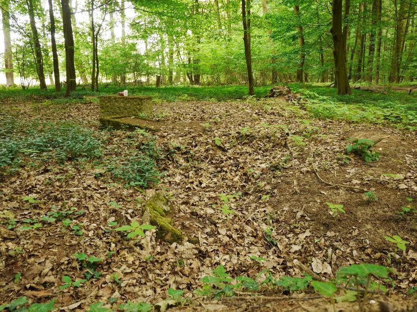 Cmentarz w Peiskerwitz