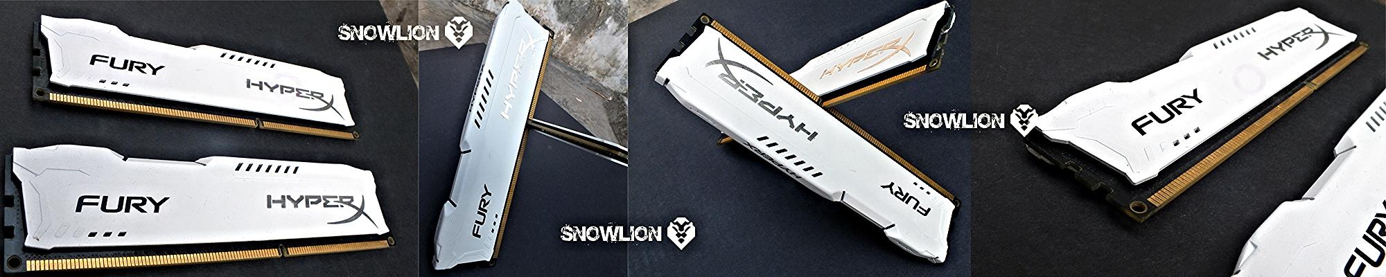 snowlion68