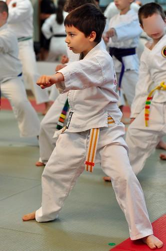 Karate - punch