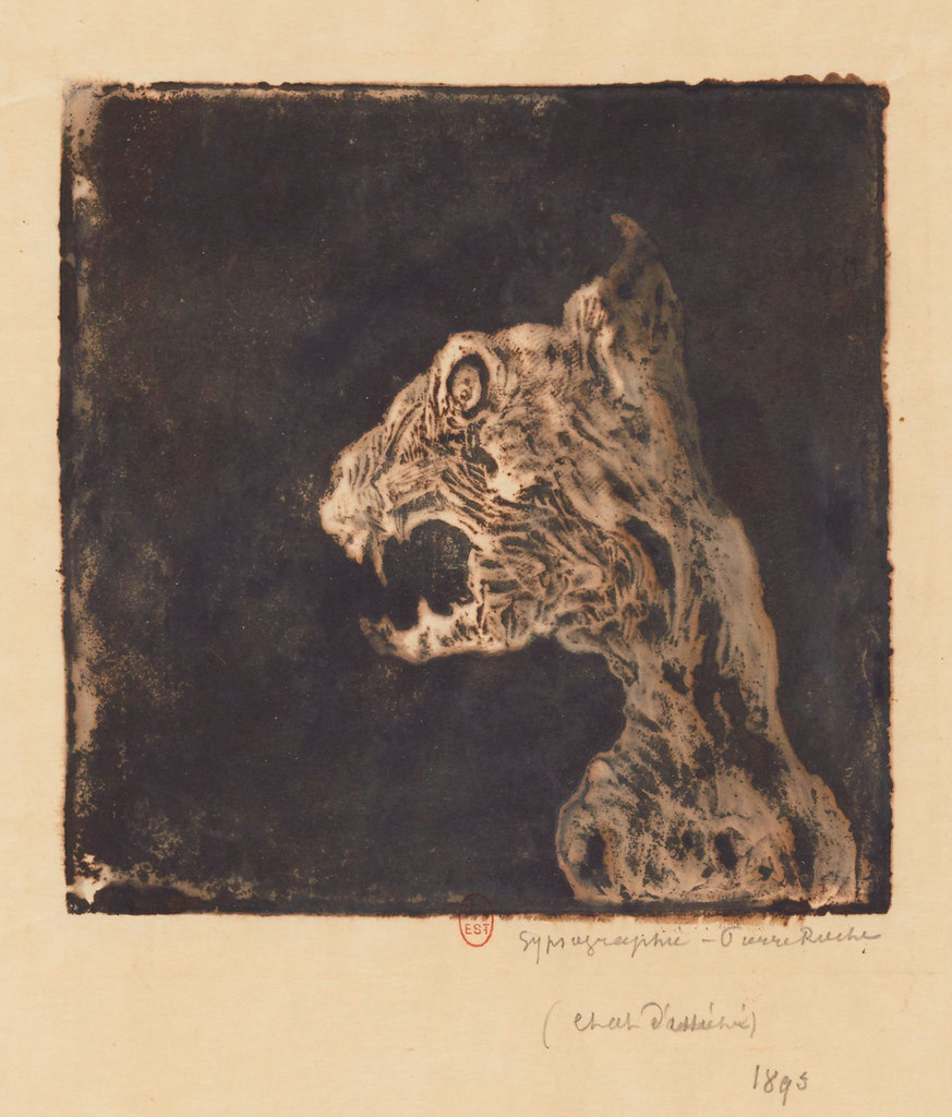 Pierre Roche - Skinned Cat, 1895