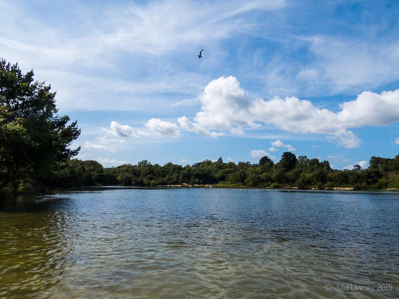 View over Ham Common Lake