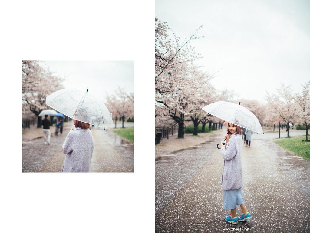 Portrait_Sakura-03